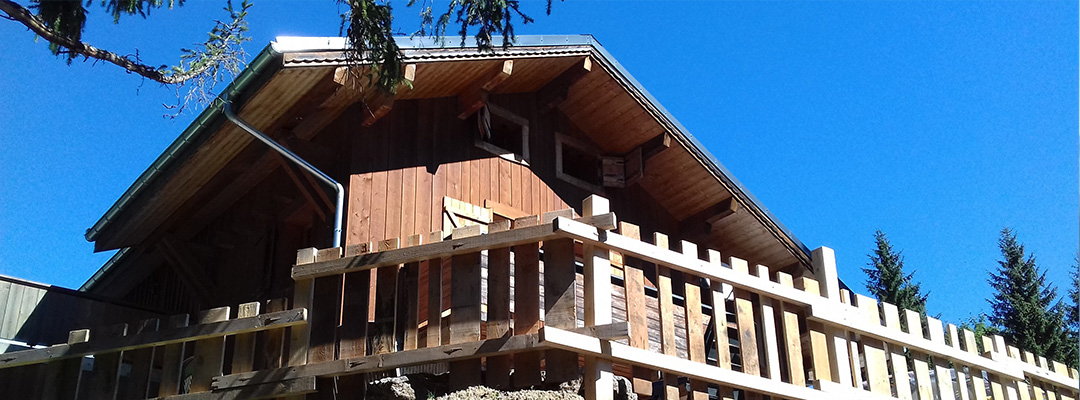 Chalet le raydan le praz de Lys en Haute Savoie