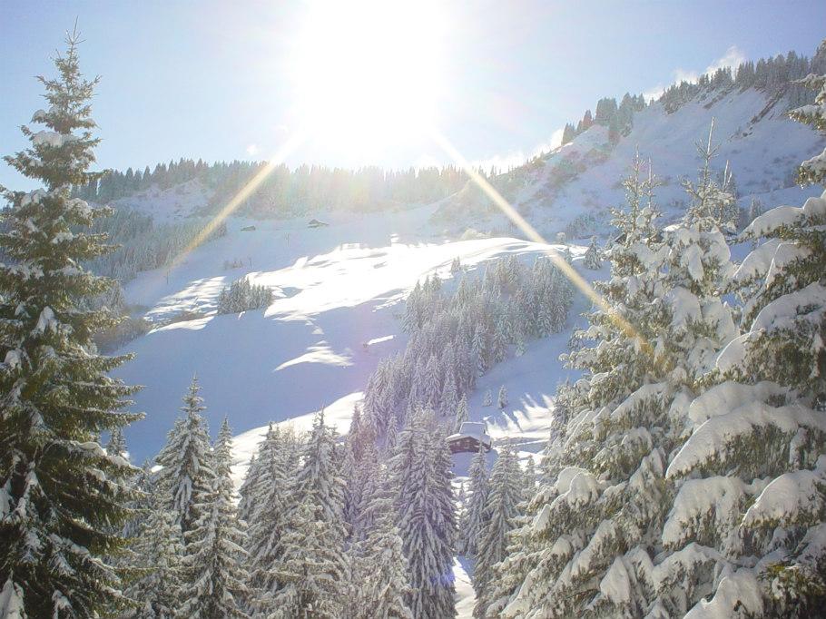 Chalet le raydan vacances hiver